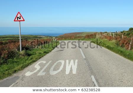 angol · vidéki · út · Cornwall · lassú · felirat · fű - stock fotó © latent