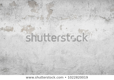black mold grunge wall stock photo © sirylok