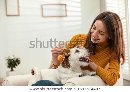 Jonge vrouw opleiding hond bloem familie voorjaar Stockfoto © konradbak