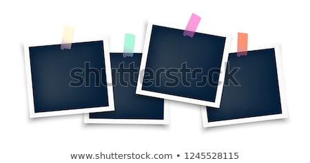 vector · icono · Polaroid · pingüino - foto stock © thecorner