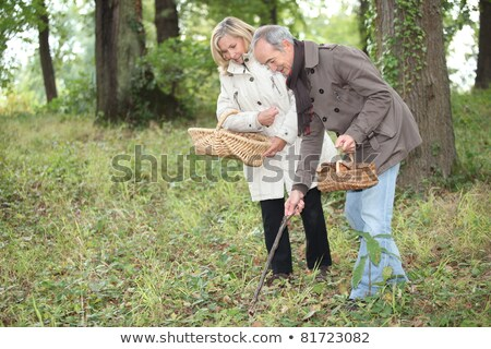 couple gathering mushrooms in the woods stock photo © photography33