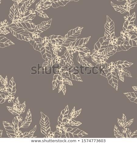 Ornamental Etching Closeup Stock photo © levonarakelian