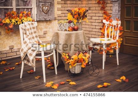 Autumn, fall leaves decorative still at studio white background stock photo © lunamarina