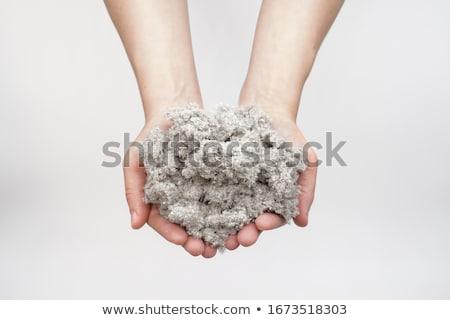 Cellulose isolatie paneel gerecycleerd kranten gebruikt Stockfoto © Stocksnapper