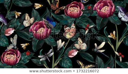 Seamless background with colorful dragonfly and flowers Stock photo © Elmiko