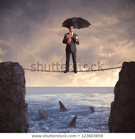 Iş adamı köpekbalığı örnek tehlikeli Stok fotoğraf © Krisdog