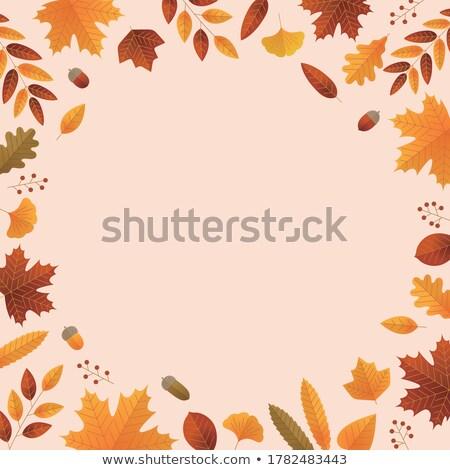 мертвых лист желтый коричневый цветами Сток-фото © AlessandroZocc