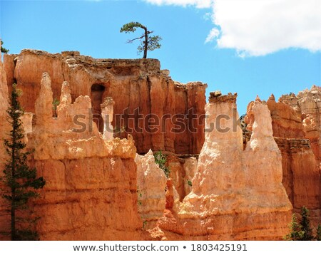 kő · park · Utah · természet · hegy - stock fotó © emattil