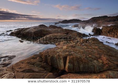 Rotsen park variëteit zee stranden Stockfoto © lovleah