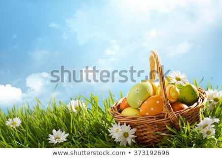 Happy easter. Yellow chicken and easter eggs Stock photo © orensila