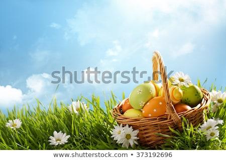 easter · eggs · pollo · design · uovo · arte · uccello - foto d'archivio © orensila