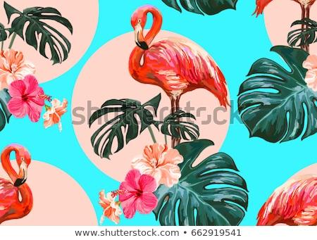 Foto stock: Vector · sin · costura · patrón · aves · árboles