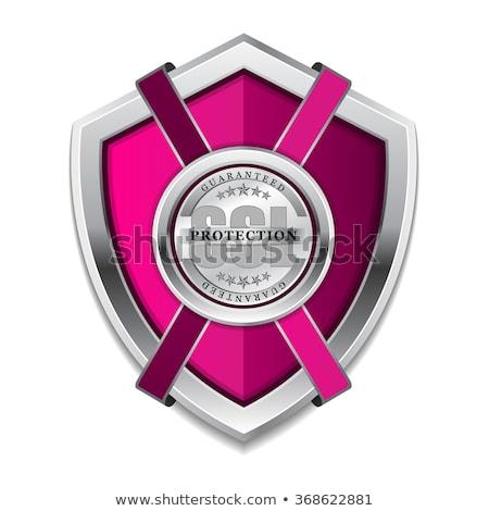 Ssl proteção proteger rosa escudo vetor Foto stock © rizwanali3d
