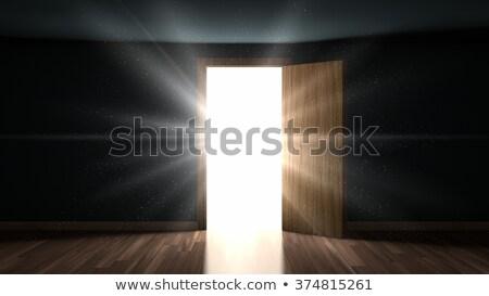 Licht deeltjes kamer opening deur donkere Stockfoto © manaemedia