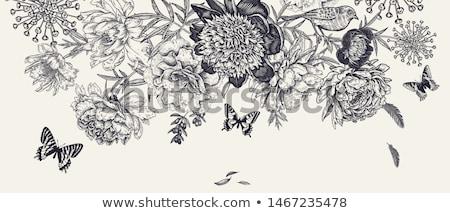 Butterflies, craft Stock photo © Vividrange