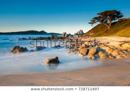 stones ocean beach carmel california stock photo © iriana88w