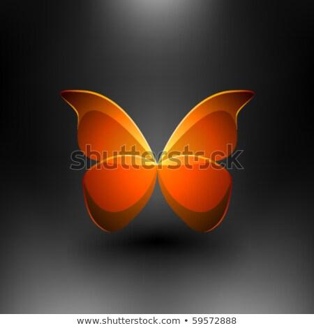 Glass Shiny Butterfly Stock photo © kayros