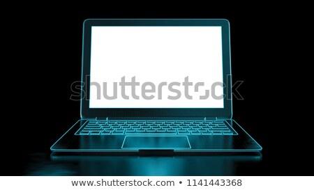 Laptop képernyő hosting modern munkahely mutat Stock fotó © tashatuvango