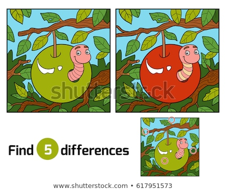 Spot the difference worm Stock photo © Olena