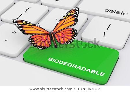 Eco Friendly CloseUp of Keyboard. 3D. Stock photo © tashatuvango
