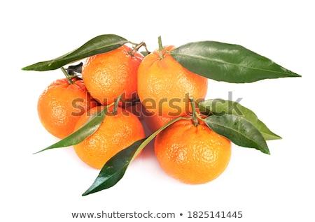 Yaprak gıda meyve turuncu tarım taze Stok fotoğraf © M-studio