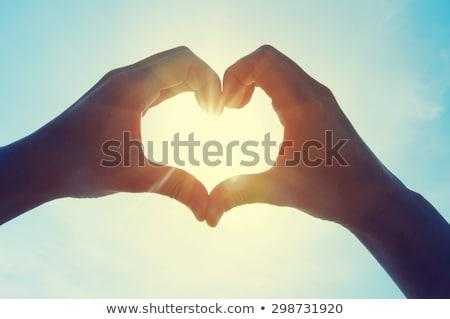 формы сердца человека рук изолированный белый любви Сток-фото © psychoshadow