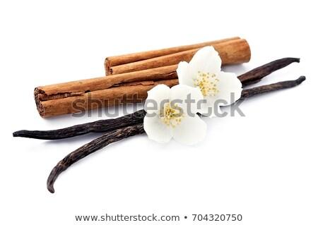 Vanília fahéj virágok fehér hátterek étel desszert Stock fotó © Masha