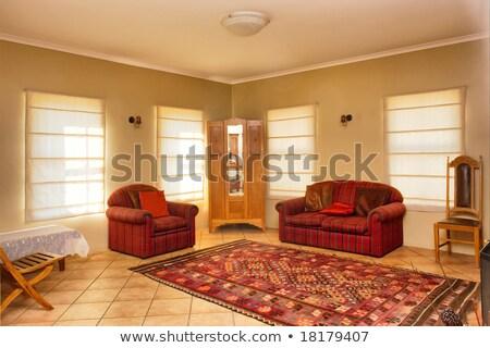 интерьер · зеленый · диване · красный · современных · стены - Сток-фото © iriana88w