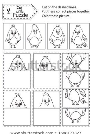match halves of cute animals game color book stock photo © izakowski