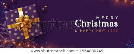 Púrpura Navidad lujo chuchería ornamento banner Foto stock © cienpies