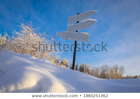 Hemel blauwe hemel zonnige weer winter zon Stockfoto © Kotenko
