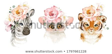 Stock fotó: Rajz · zebra · virágok · illusztráció