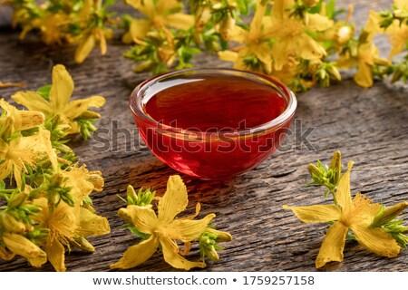 rouge · pétrolières · fleurs · bouteille · alimentaire · table - photo stock © madeleine_steinbach