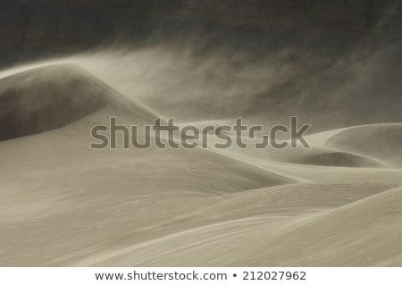 Stormy deserto scena illustrazione natura panorama Foto d'archivio © bluering
