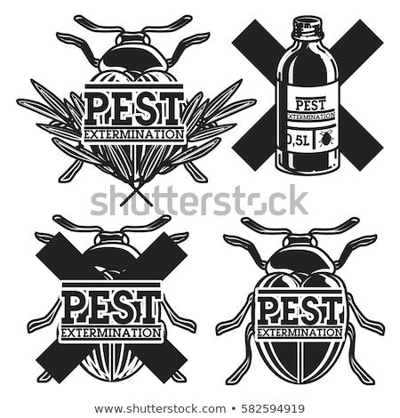 Szín klasszikus kártevő embléma címke kitűző Stock fotó © netkov1