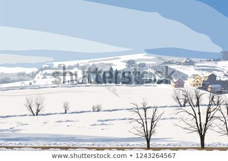 Inverno vettore piccolo frazione neve Foto d'archivio © frimufilms