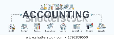 Financial Accounting Minimal Infographic Banner Vector Stock photo © pikepicture