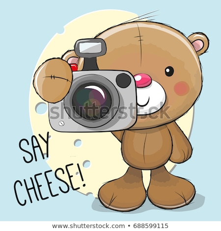 photographer photographs bear in nature stock photo © barsrsind