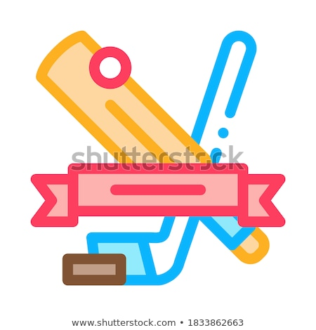 Hockey Sport Lesson Icon Vector Outline Illustration Stock photo © pikepicture