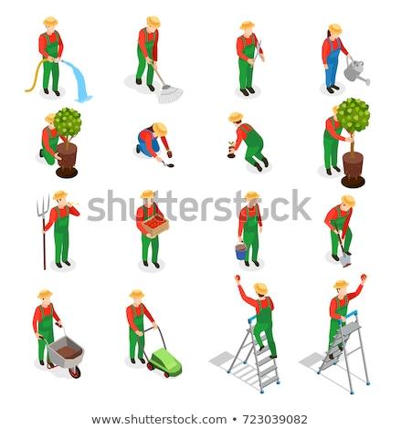 Kertészkedés szolgáltatások absztrakt vektor illusztrációk szett Stock fotó © RAStudio