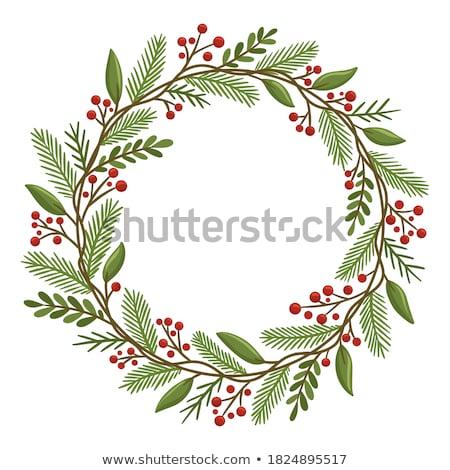 Natürlichen Winter Grün Weihnachten Kranz Fichte Stock foto © marilyna