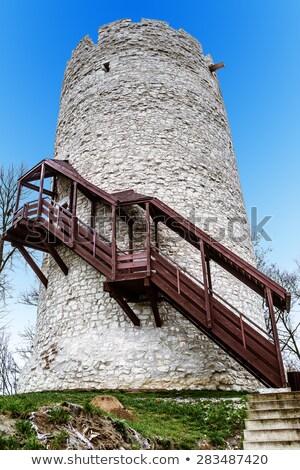 Toren ruines kasteel berg Oekraïne muur Stockfoto © antkevyv