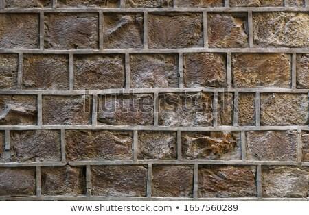 unusual odd crack in stone surface Stock photo © Melvin07