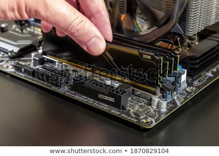 memory module in human hand Stock photo © gewoldi