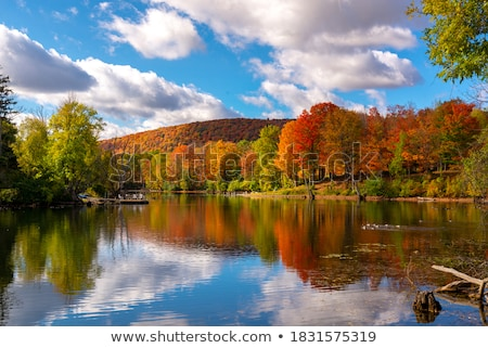 Afternoon Clouds in the North Woods Stock photo © wildnerdpix