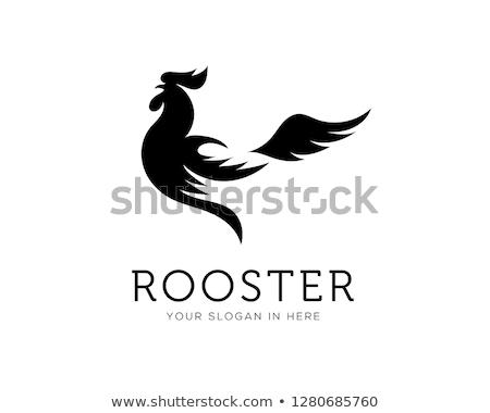 コック オンドリ クローズアップ 草 卵 鳥 ストックフォト © franky242