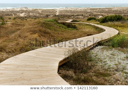 Stock photo: Walking on wooden boardwalk