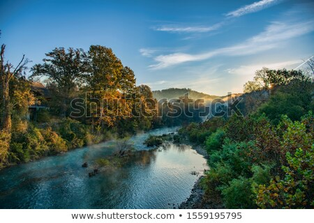 Buffalo River in the Autumn stock photo © macropixel