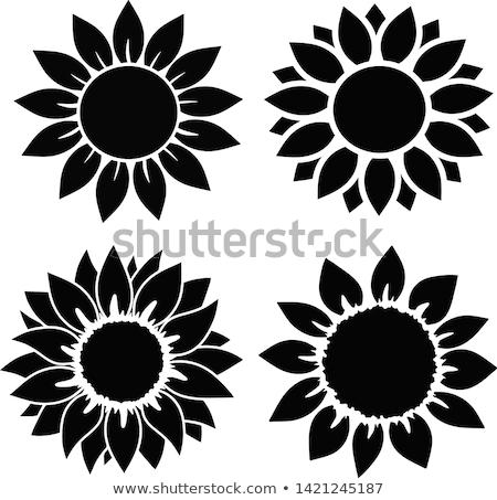 zonnebloem · plant · vector · icon · stijl - stockfoto © zzve
