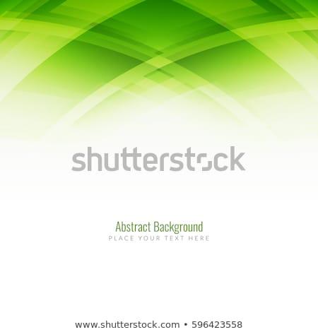 Absztrakt zöld fényes terv kártya fehér Stock fotó © rioillustrator